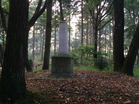 dat is 'm dus, even zoeken... maar een echte mini-obélix, eeeuh.. obelisque