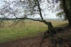 Melancholie door wind erosie