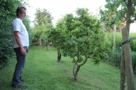 """Godfried in zijn bongerd, kijkend naar de """"vergeten"""" fruitbomen..."""